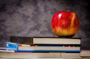 Arbeiderpartiet vil gjeninnføre skolefruktordningen og tilby sunn mat i skolen for alle elever hver dag.